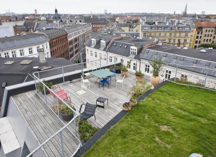 Rooftop Garden Birkegade - JDS Architects (foto: Allard de Goeij)